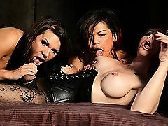 Horny Ashley George in a wild transsexual dungeon orgy